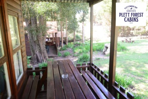 Standard Family Cabins Plett Forest Cabins Plettenberg Bay