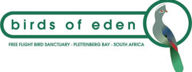 Birds of Eden Plettenberg Bay Plett Forest Cabins Wildlife Sanctuary Adventure