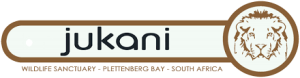 Plett Forest Cabins discount vouchers